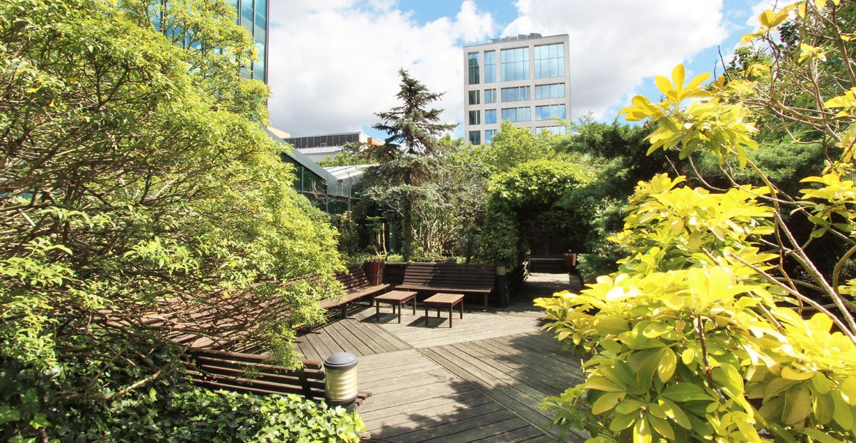 Evergreen House North - Terrace garden